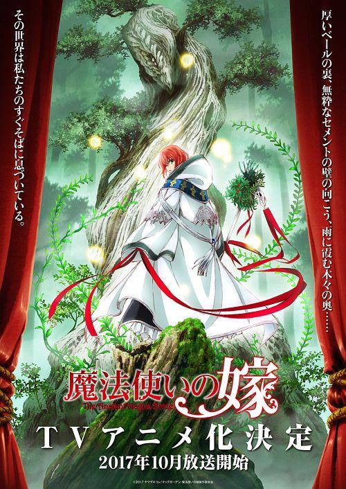 《魔法使的新娘》宣布TV动画化!将于今秋放送!