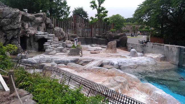 再合作一波算了,东武动物园再与《兽娘动物园》合作!-ANICOGA